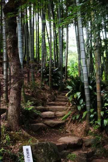 laurent ibanez derriere la colline vallee todoroki jardin japonais