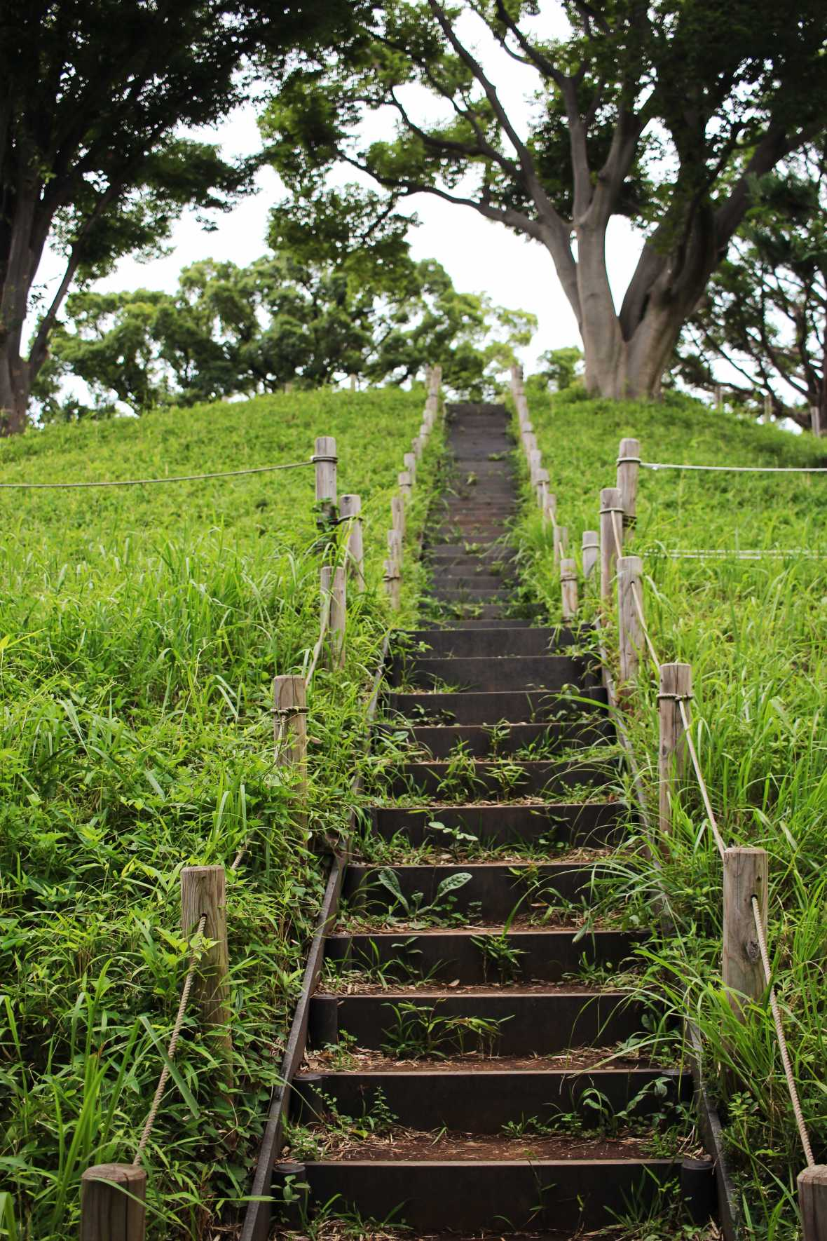 laurent ibanez derriere la colline vallee todoroki kofun