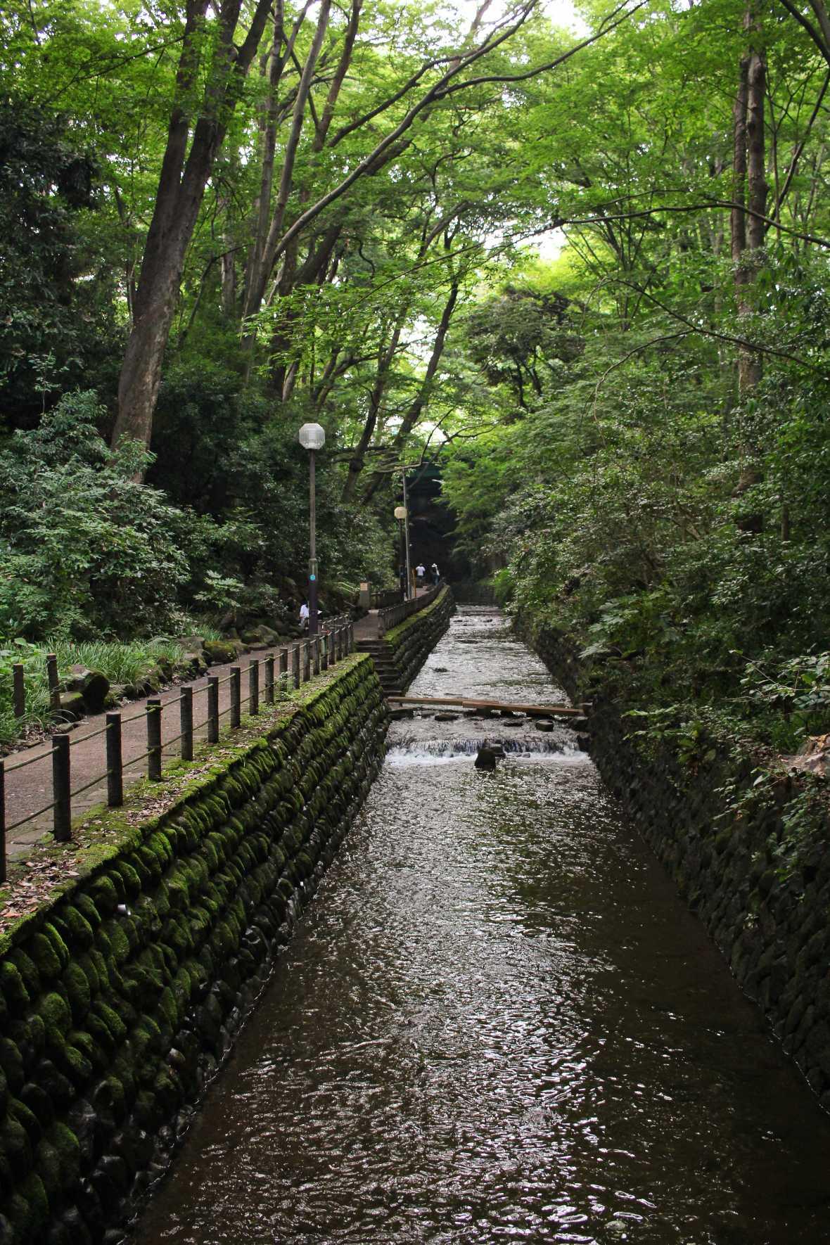 laurent ibanez derriere la colline vallee todoroki riviere