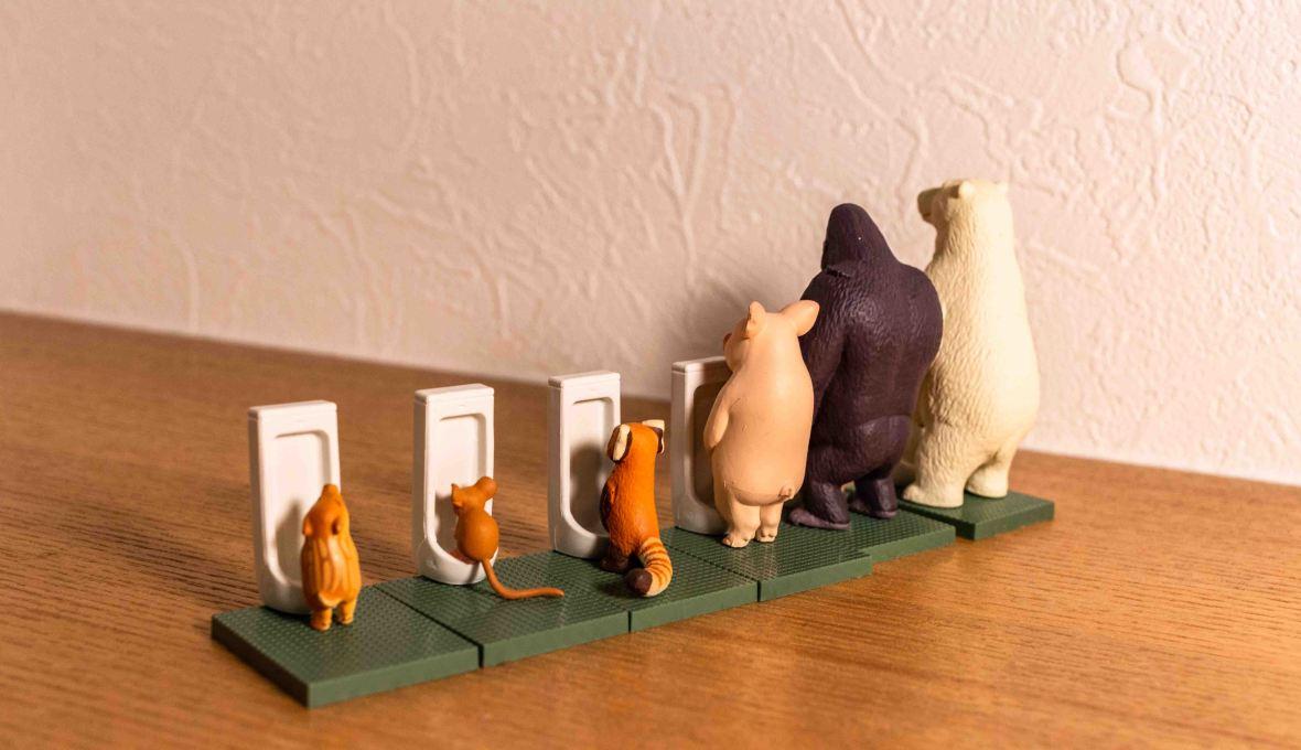 laurent ibanez derriere la colline gachapon animaux aux toilettes