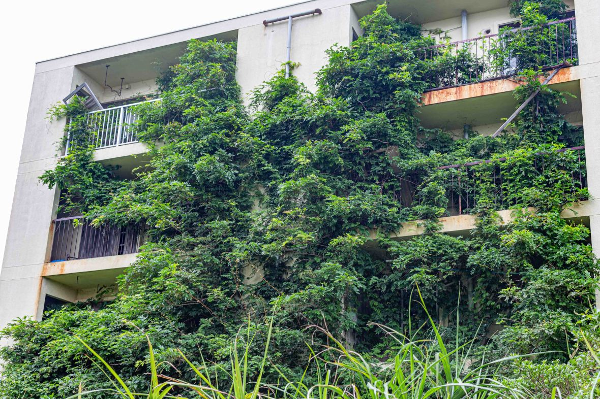 Laurent Ibanez Derriere la colline Ikeshima facade recouverte